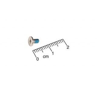 922-6613 Screw, 2.5 x 0.45 x 4.5, H6 -  12 inch 1.2GHz iBook G4 A1056