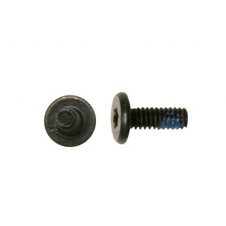 922-7311 Screw,M2X5.5,4.5D,T6,PK-5 - 15inch Macbook Pro